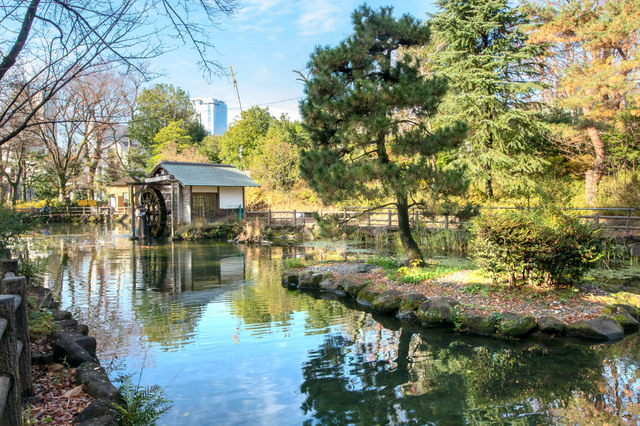 鍋島松濤公園の池