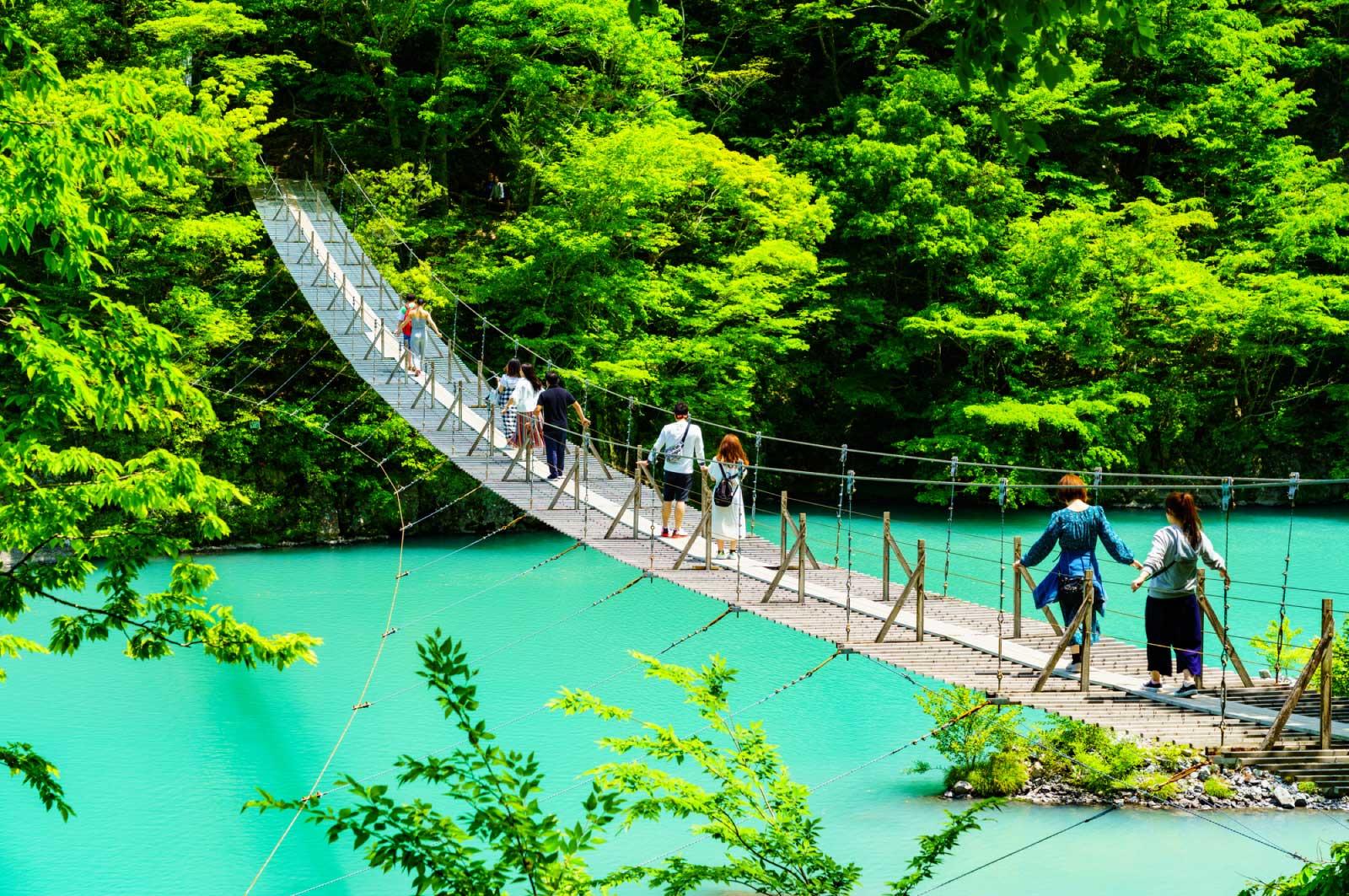 静岡には自然スポットもたくさんある