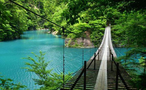 大人気なのが「夢のつり橋」