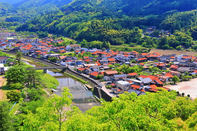 太皷谷稲成神社から見た津和野(島根)の町並み