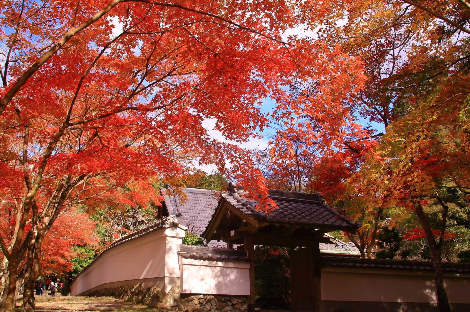 神峯山寺(高槻)