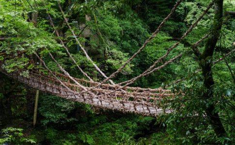 祖谷のかずら橋は揺れる