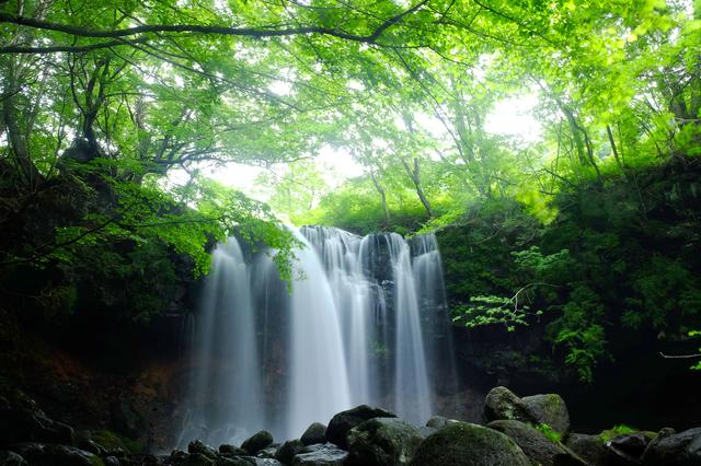 乙女の滝(栃木)