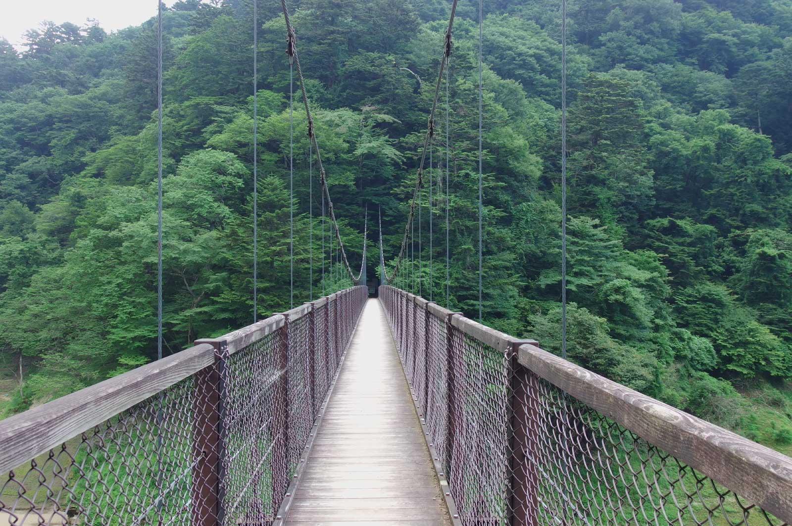 夏の回顧の吊橋(那須塩原)
