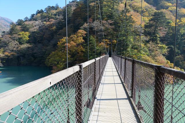 回顧の吊橋(栃木)