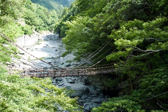 峡谷にかけられたかずら橋