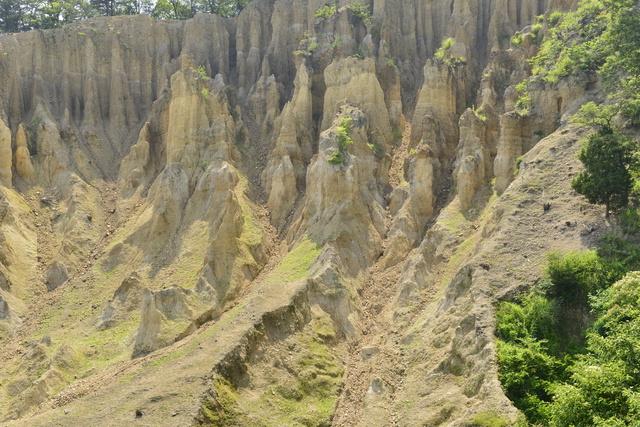 阿波の土柱の表面