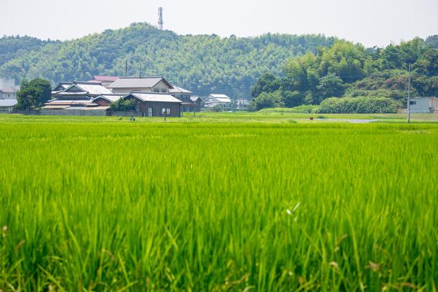 鳥取の集落