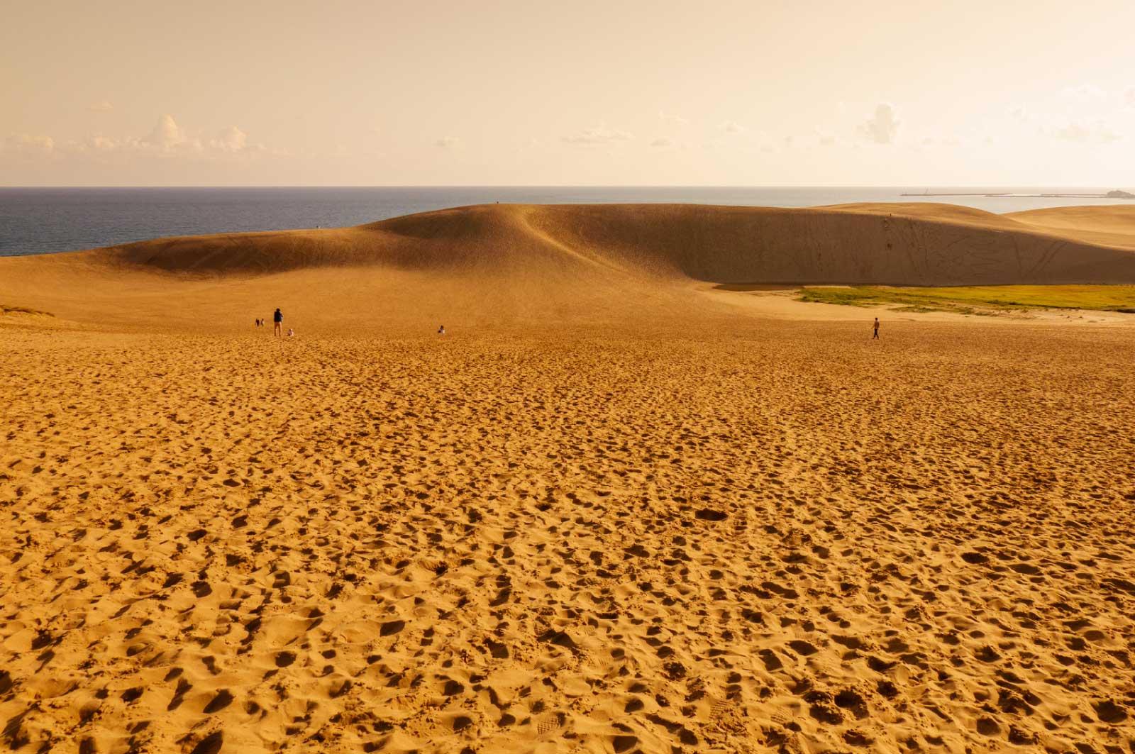 夕刻の鳥取砂丘