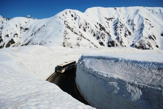 春に訪れる「雪の大谷」