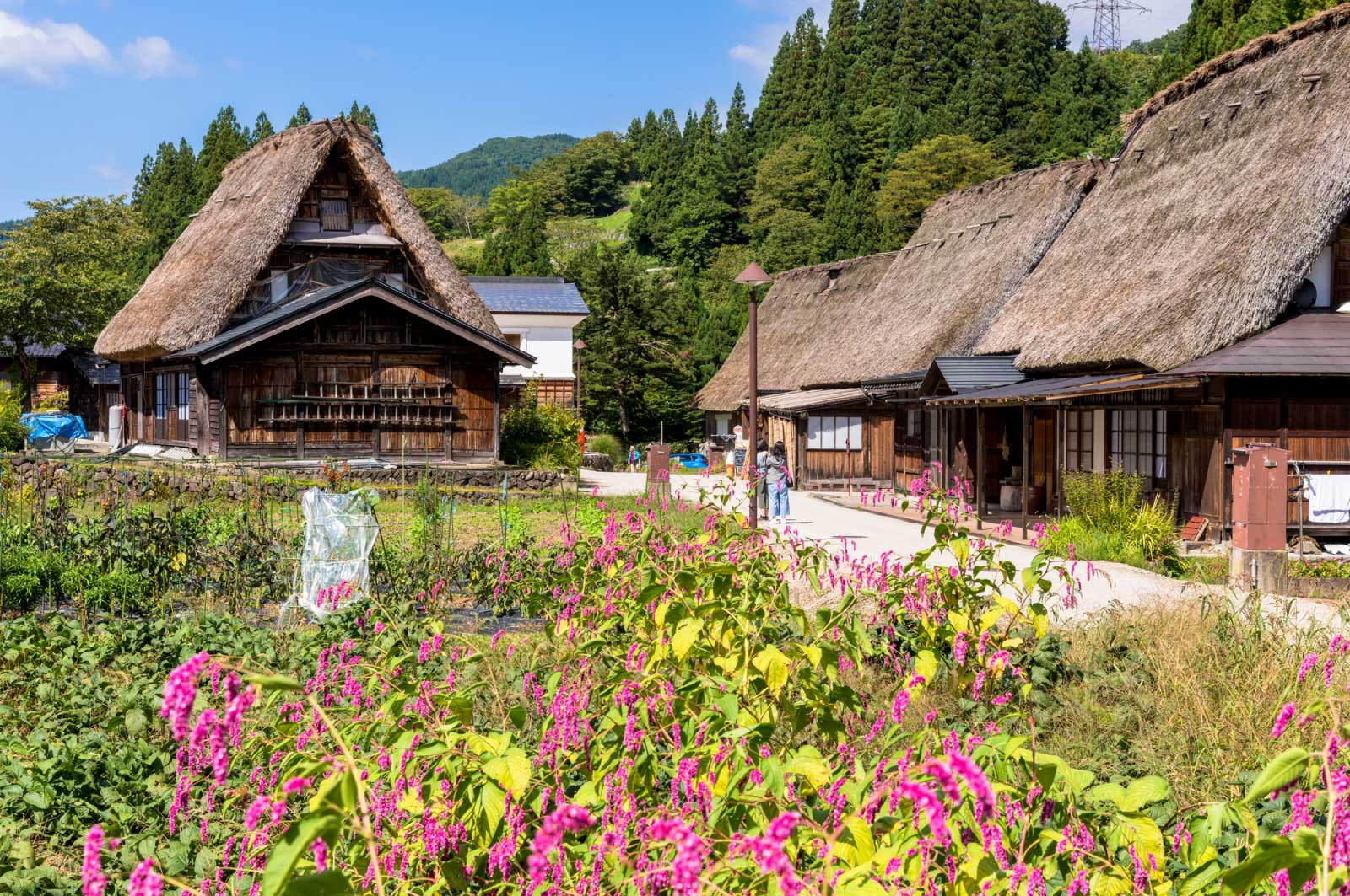 富山県にある世界遺産が「相倉合掌作り集落」というスポット