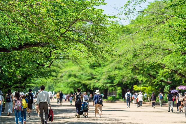 初夏の上野公園