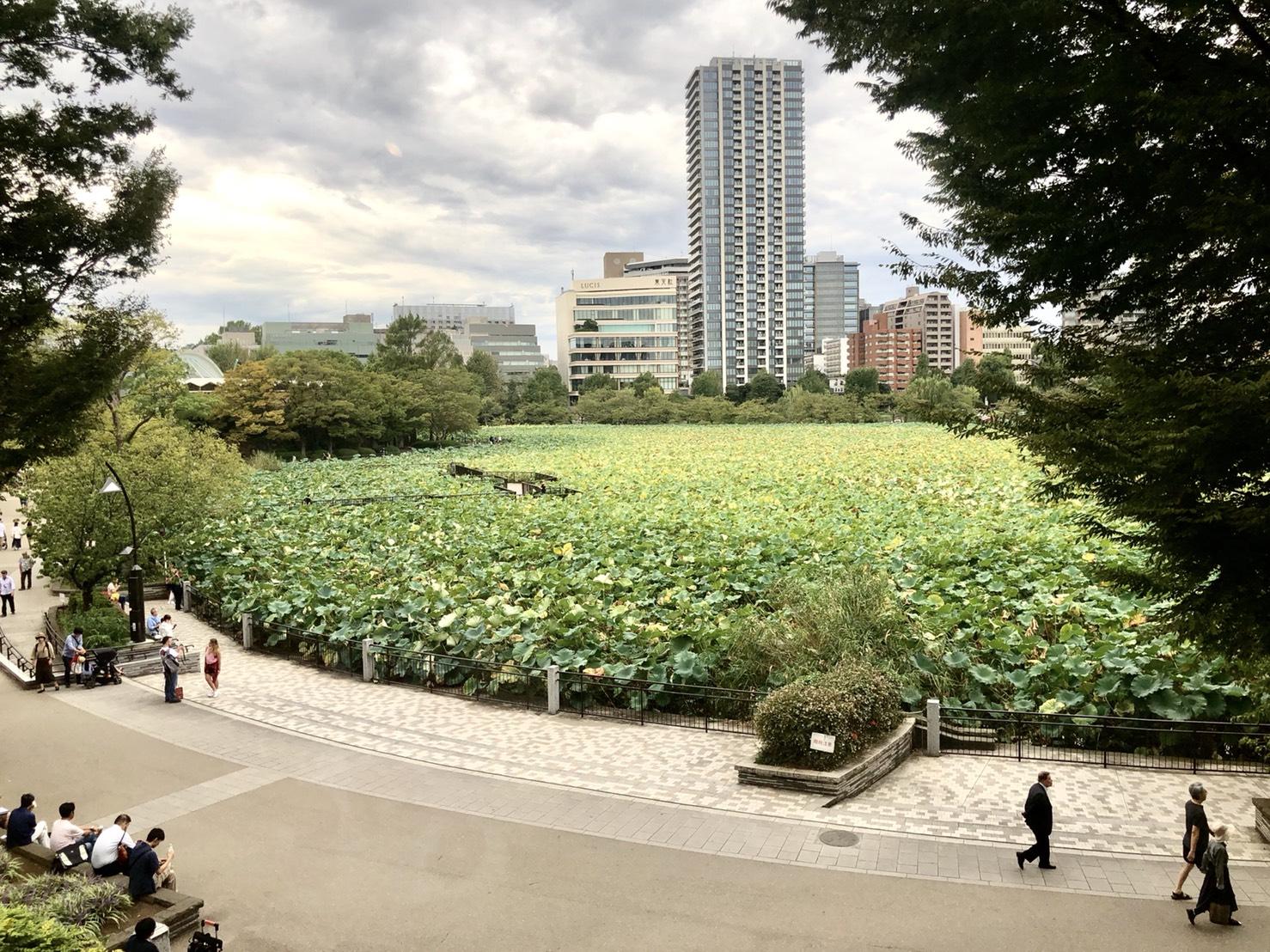 上野公園・不忍池