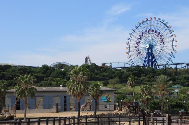 和歌山アドベンチャーワールドの観覧車とキリン