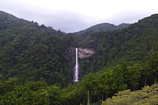 落差が133メートルもある「那智の大滝」