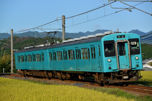 和歌山線を走る電車