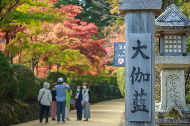 金剛峯寺の参道