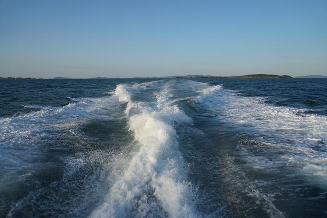 定期船からの景色