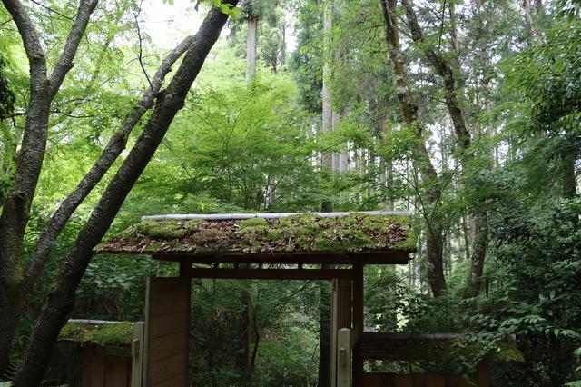苔寺(京都)