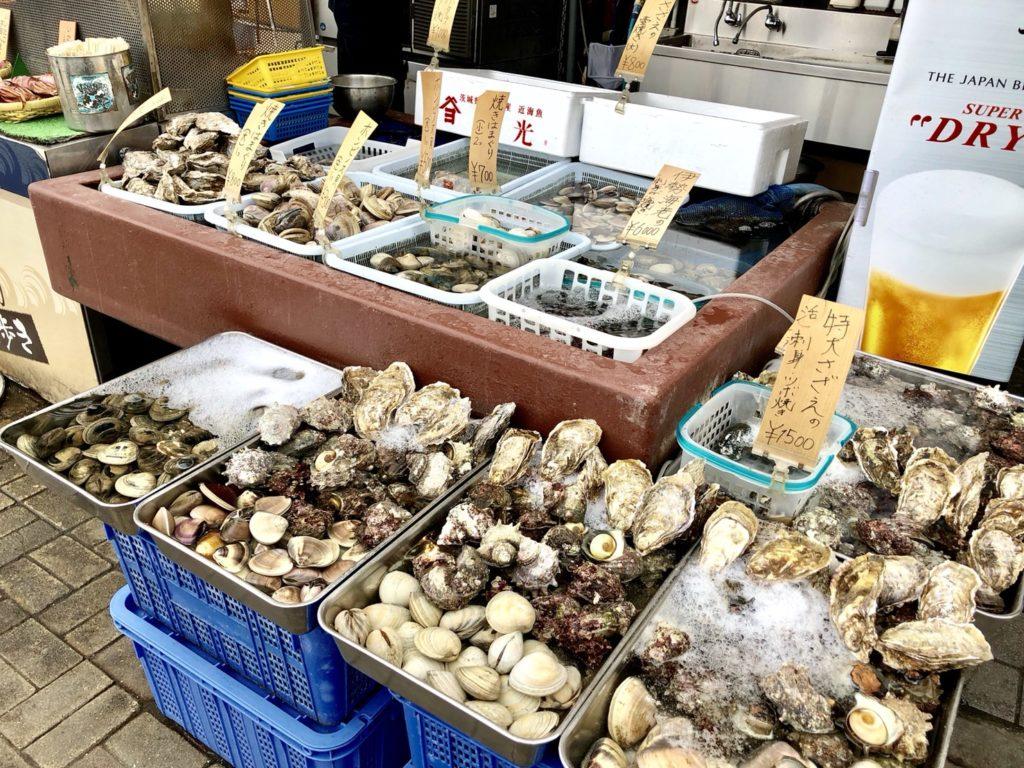 たくさんの海産物が並ぶ