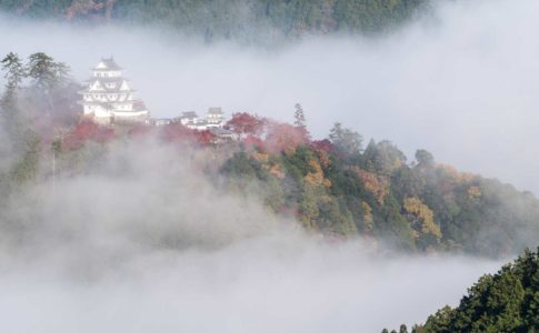 朝霧に浮かび上がる八幡城