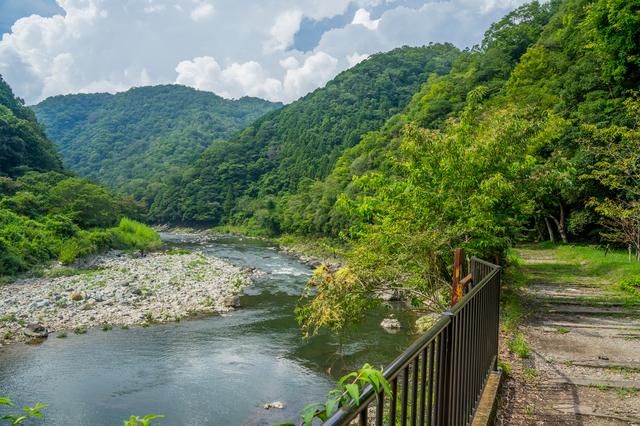 福知山線廃線敷と川