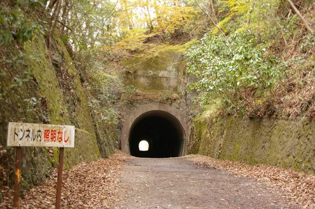 紅葉の福知山線廃線敷(兵庫)
