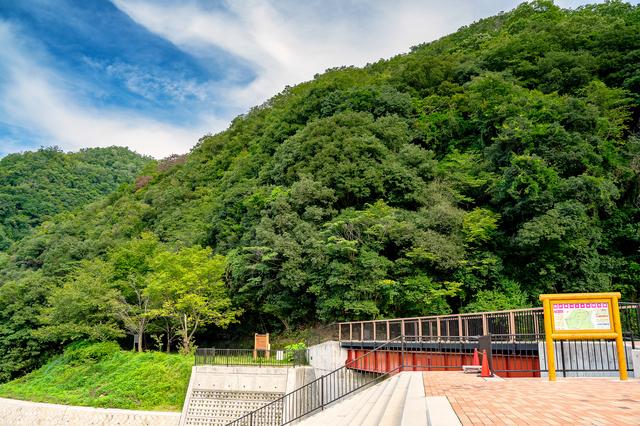 山の中を走る旧福知山線