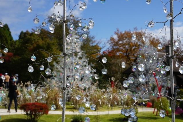 ガラスのツリー(箱根ガラスの森美術館)