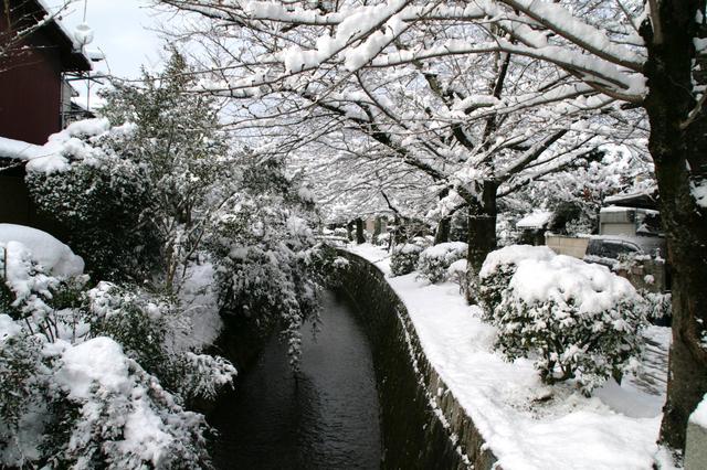 冬は雪化粧