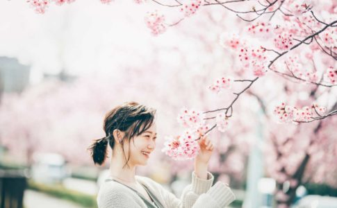 桜は私も好きな花