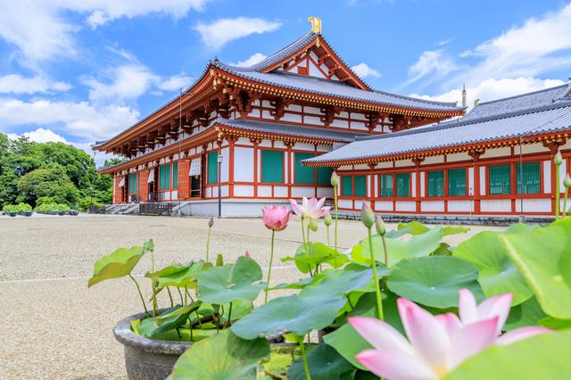 産薬師寺と睡蓮