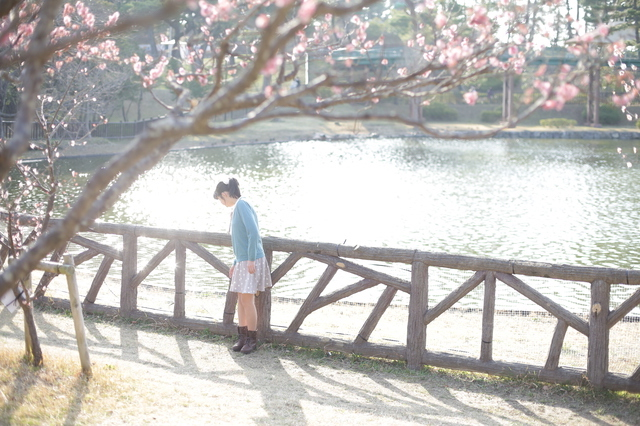 岡崎南公園の梅