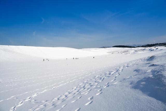 鳥取砂丘の雪景色
