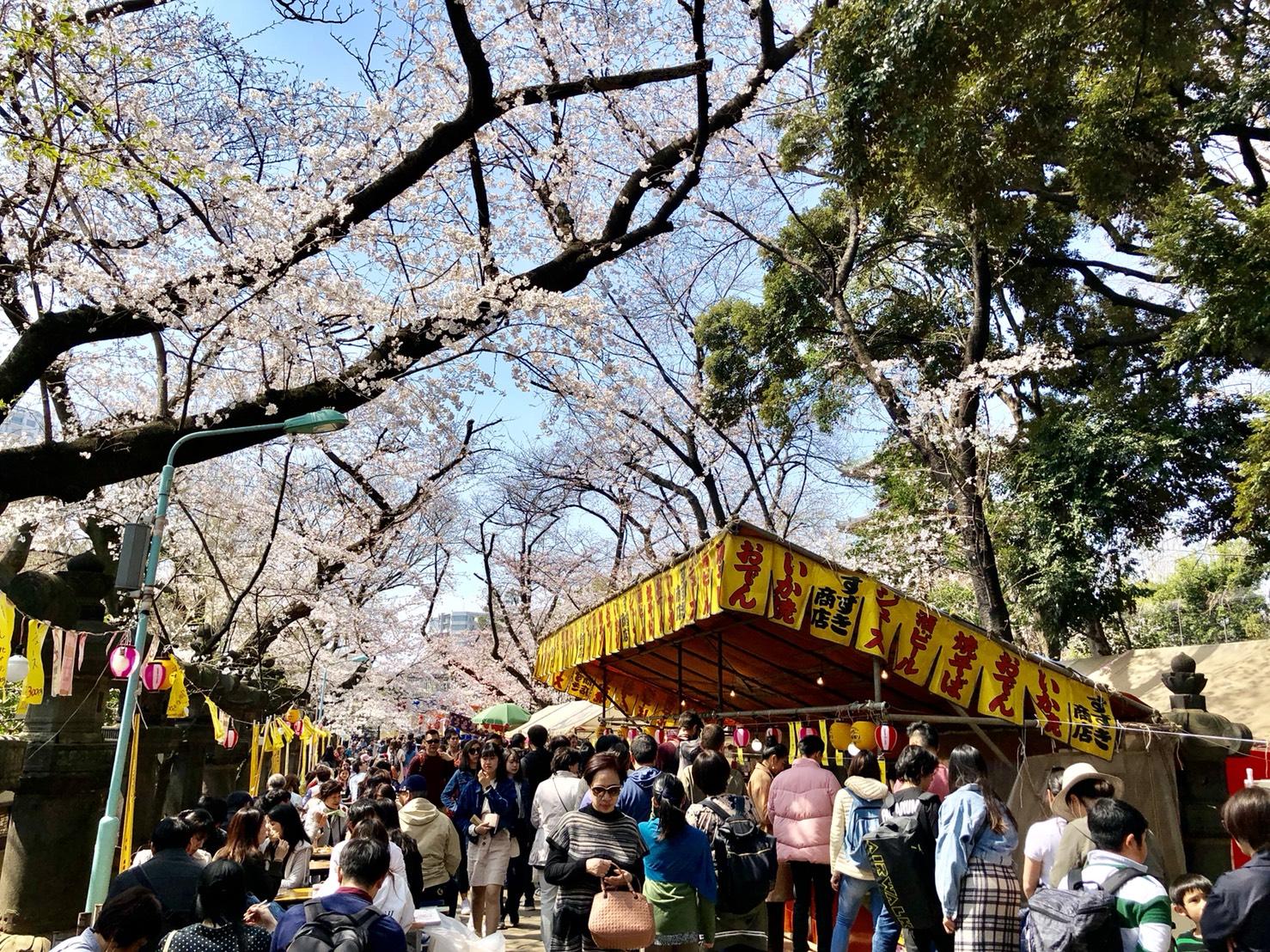 上野東照宮の参道