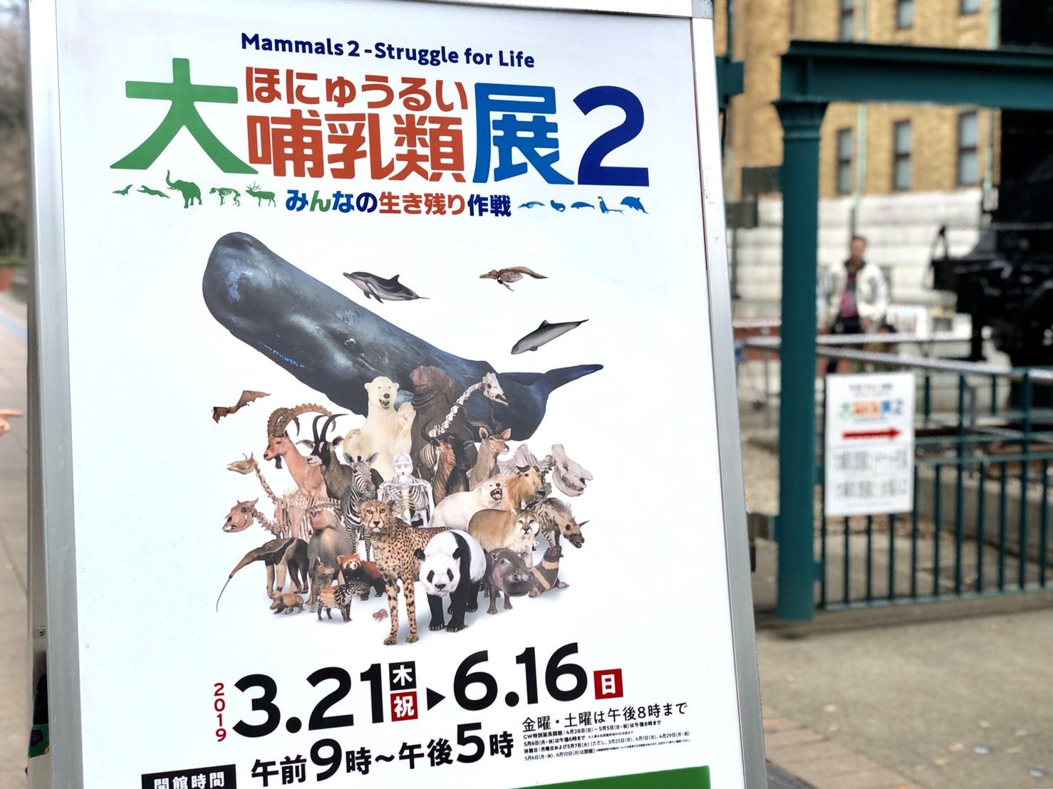 大哺乳類展2ポスター