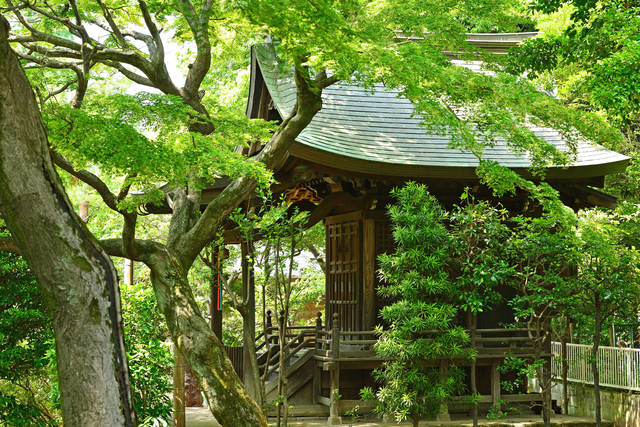 高円寺で見かけた祠