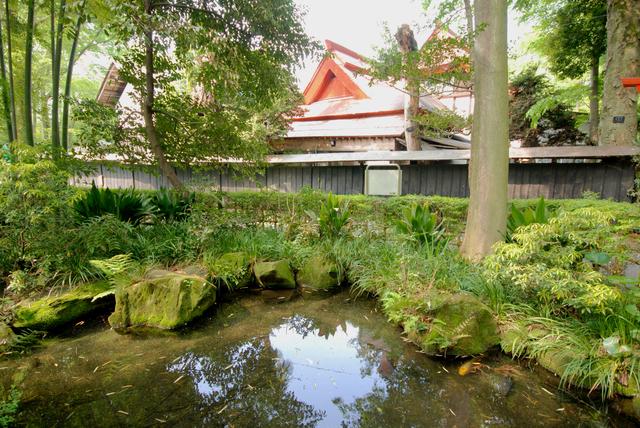 真姿の池2