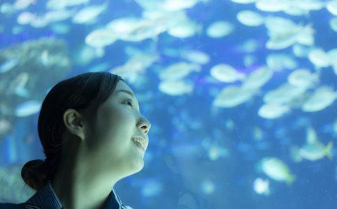 大阪・海遊館を楽しむ彼女