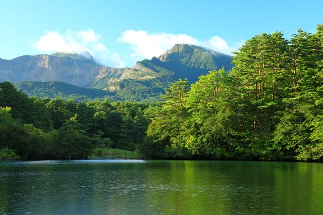 緑に色づく毘沙門沼