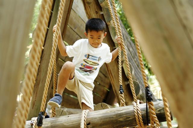 柏の手賀の丘公園を楽しむ息子