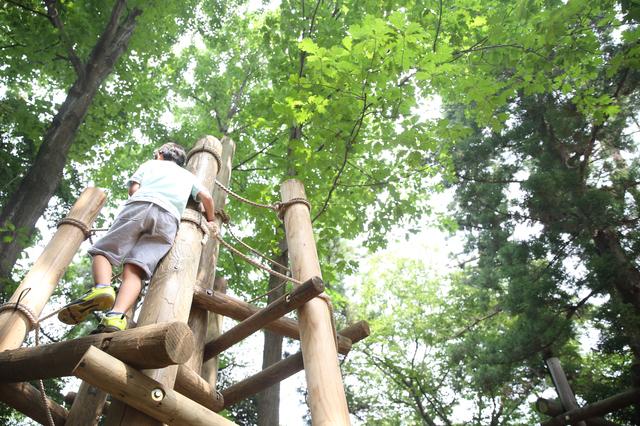 手賀の丘公園(柏)のアスレチック