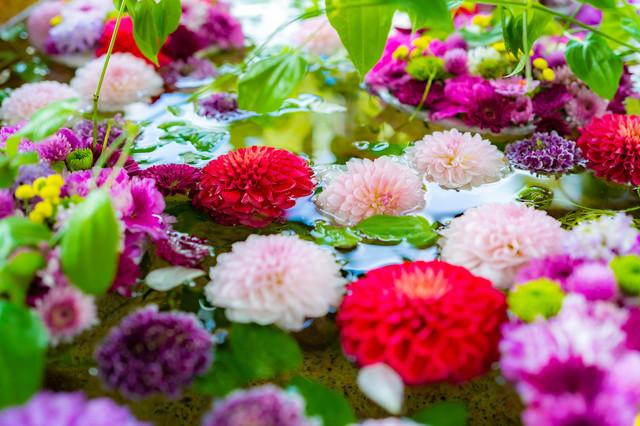 野見神社の花手水