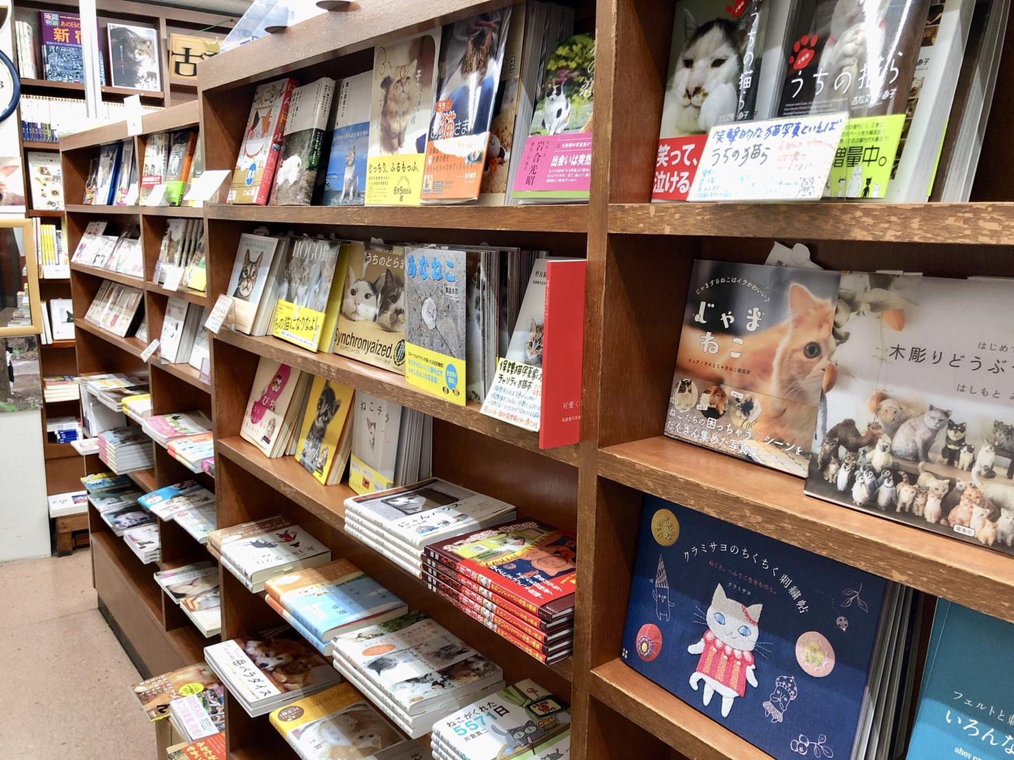 姉川書店(にゃんこ堂)店内