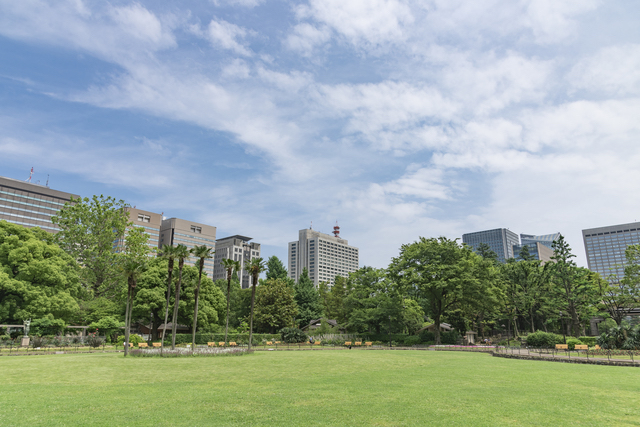 日比谷公園の芝生