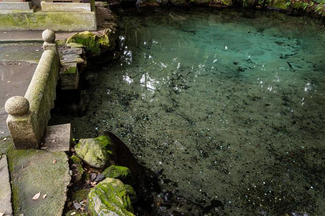 泉が森の湖の底