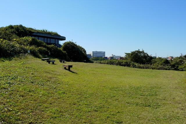 ネイチャーセンター(東京港野鳥公園)