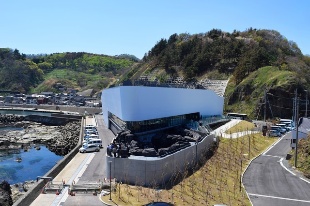 加茂水族館(山形)