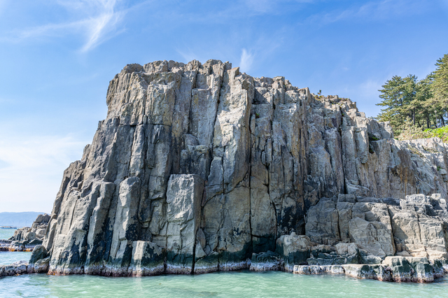 荒々しい形状の断崖の東尋坊