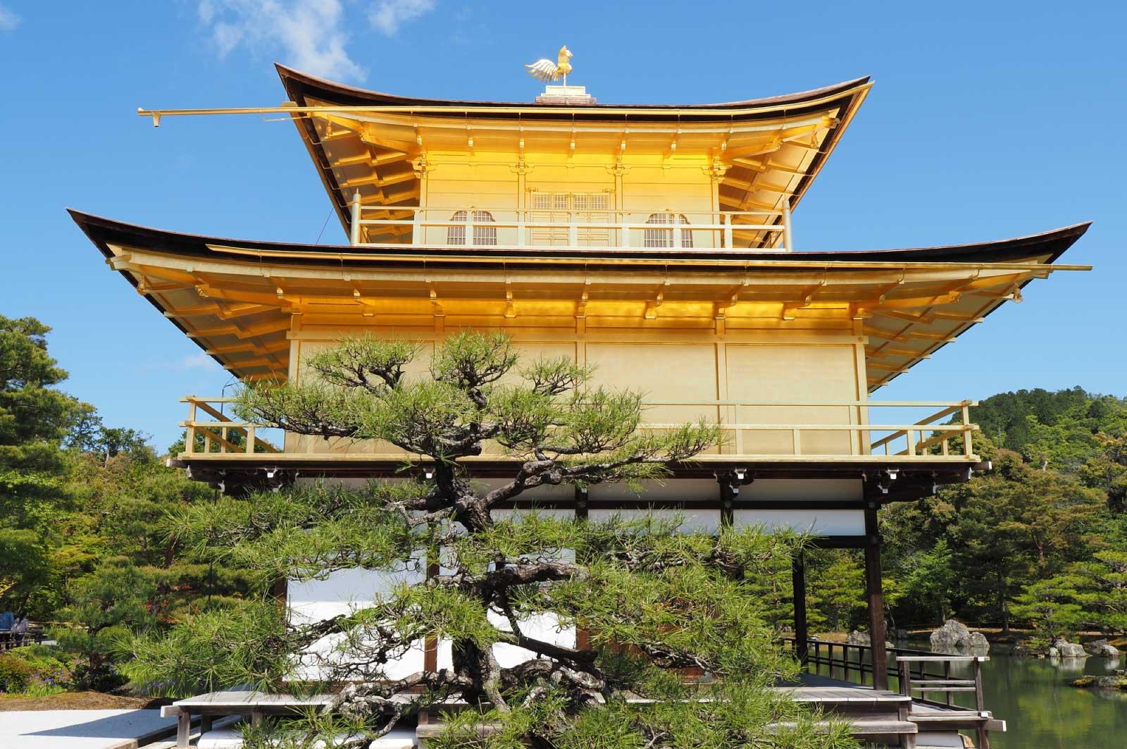 金閣寺(横からのショット)